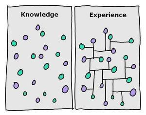 Thumb_knowledge-vs-experience